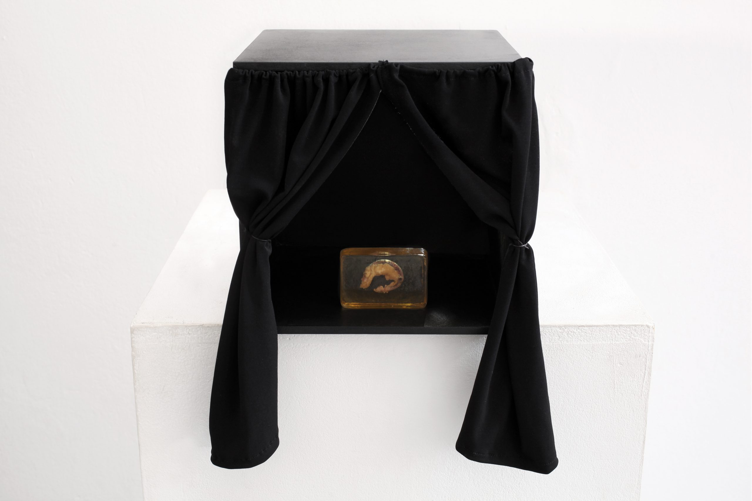 Karl Heinz Schiefler - Blinddarm in der Box